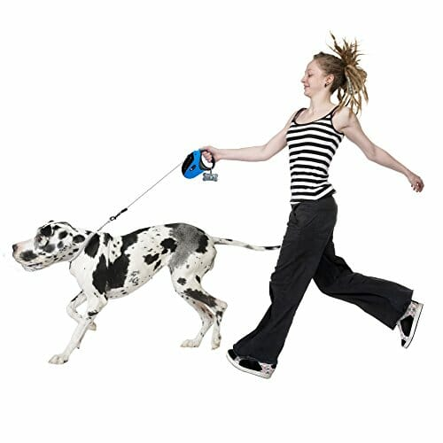 woman walking her big dog
