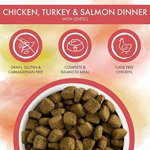 Weruva caloric chicken turkey & salmon dinner