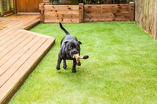 Pet Zen Garden Artificial Grass Patch