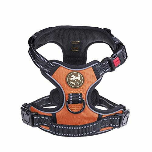 PoyPet reflective adjustable harness