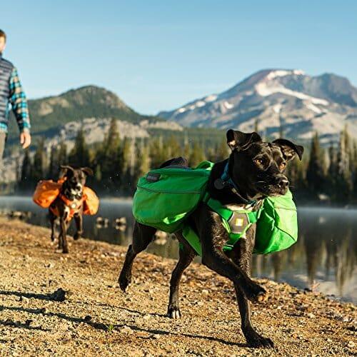 Ruffwear Approach All-Day Dog Backpack