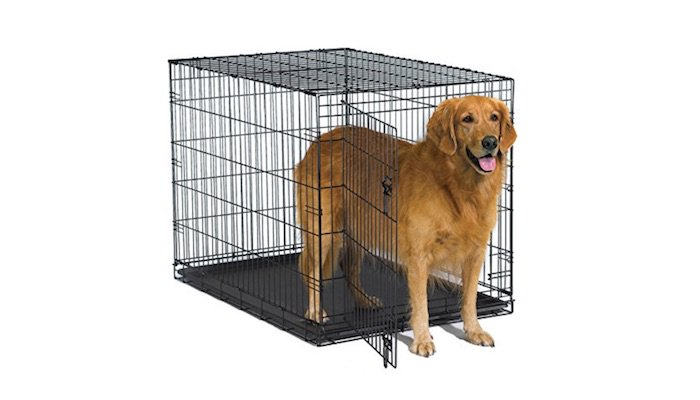 10 Best Dog Crates in 2021