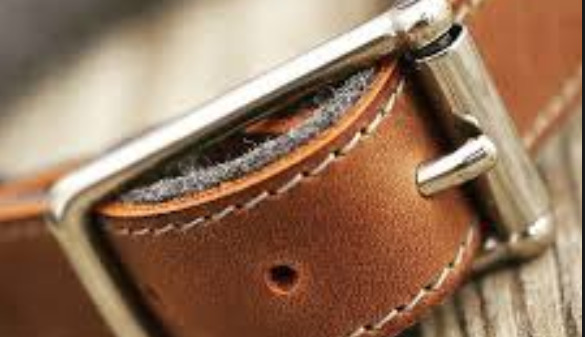 A History of Dog Collars