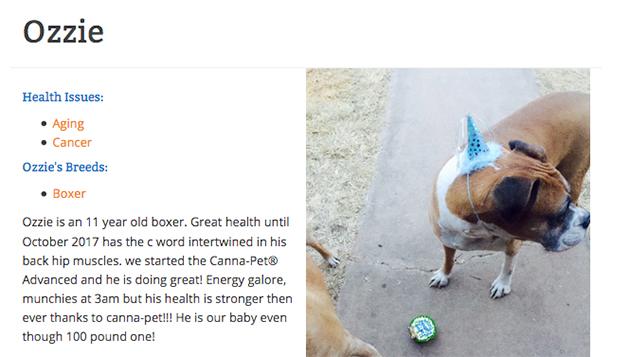 ozzie dog card