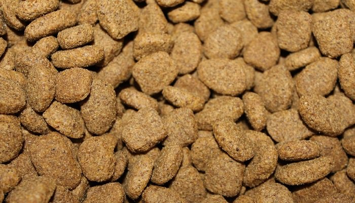 Tips to Find All-Natural Pet Food Within Your Budget