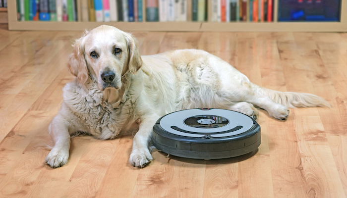 10 Best Cordless Vacuums For Pet Hair in 2021
