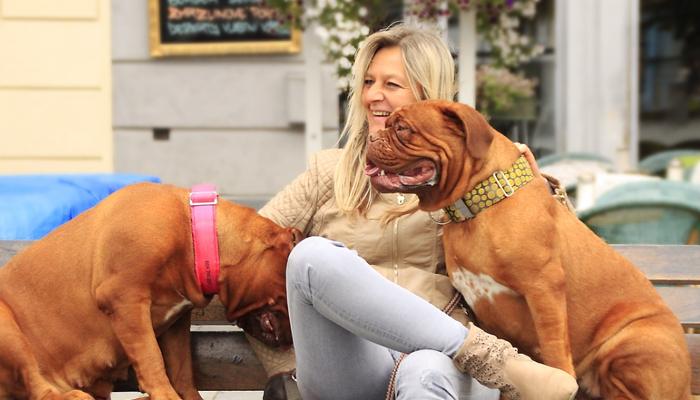 10 Best Dog Collars In 2020
