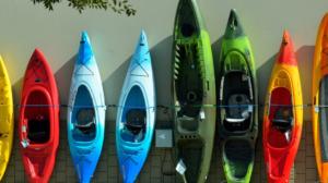 Kayaks display