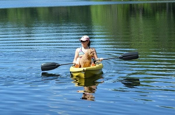 Kayaks for Dogs Buyers Guide