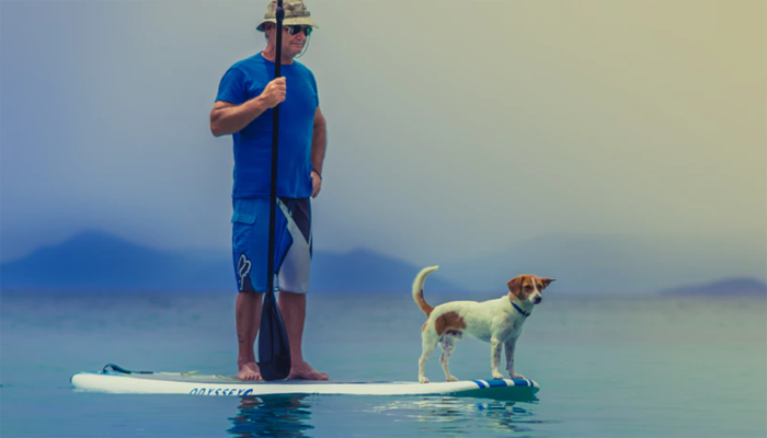 5 Best Inflatable Paddle Boards for Dogs in 2021