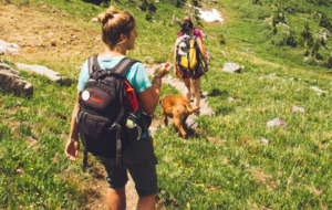 Two person hiking with dog