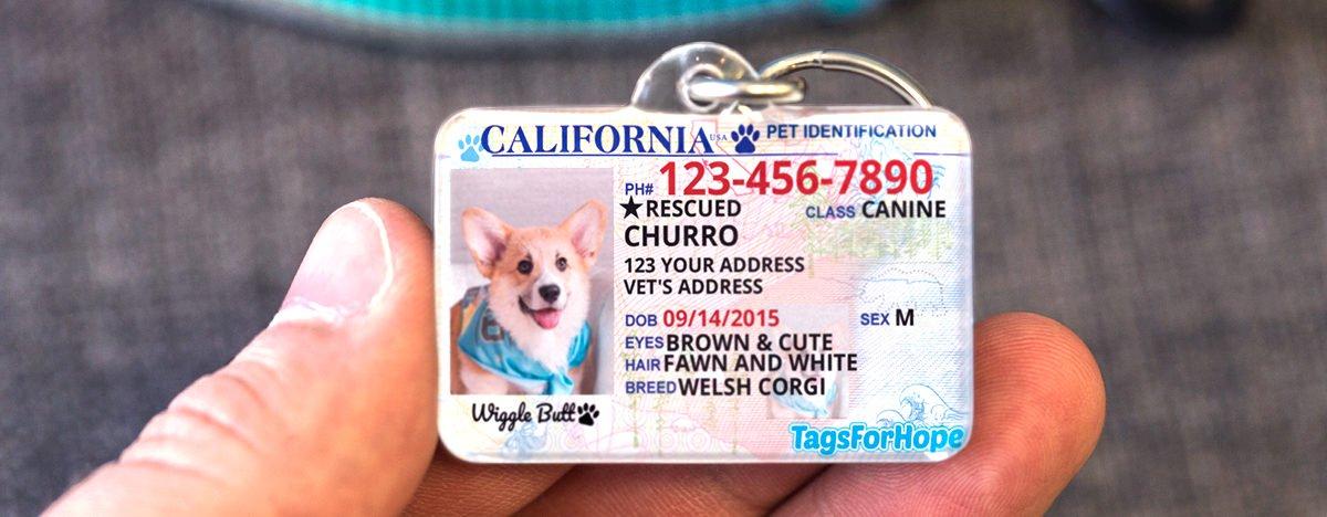 TagsForHope California State Tag