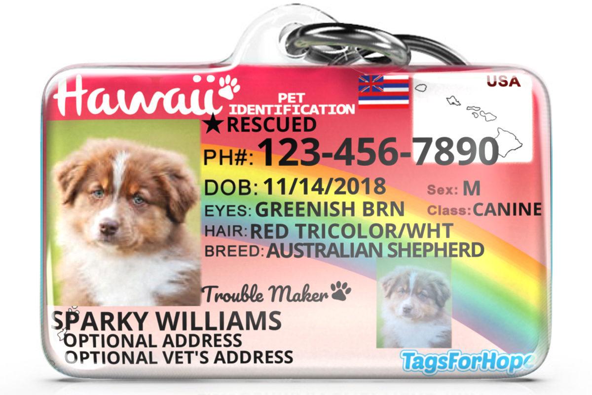 Hawaii Dog Tag