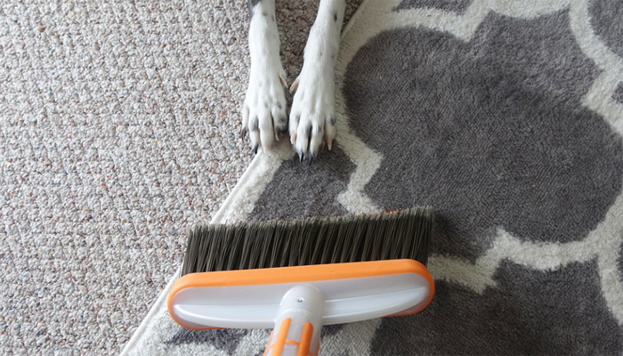9 Best Dog Hair Brooms in 2021