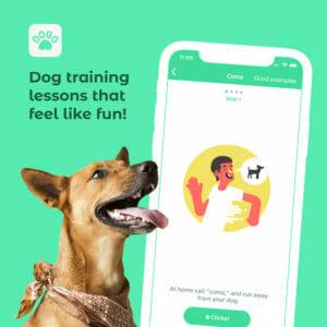 Dogo App