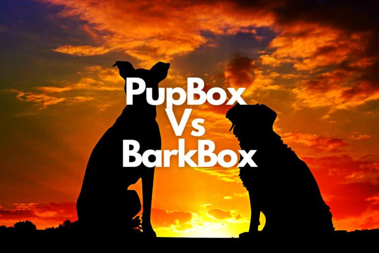 Pup Box Vs Bark Box