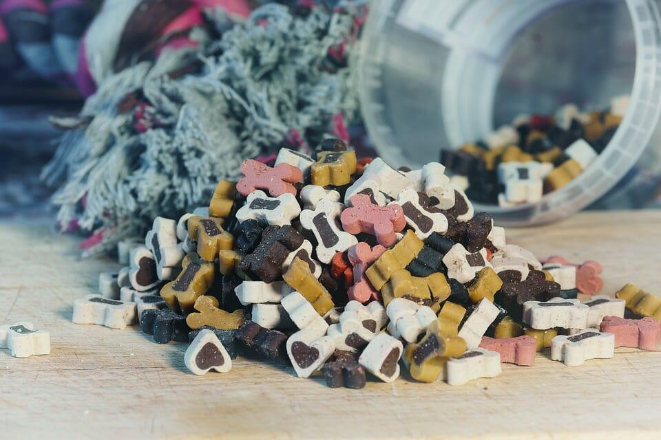 How Should I Store Dog Food?