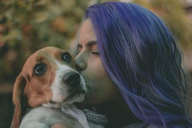 Woman kissing a brown white dog
