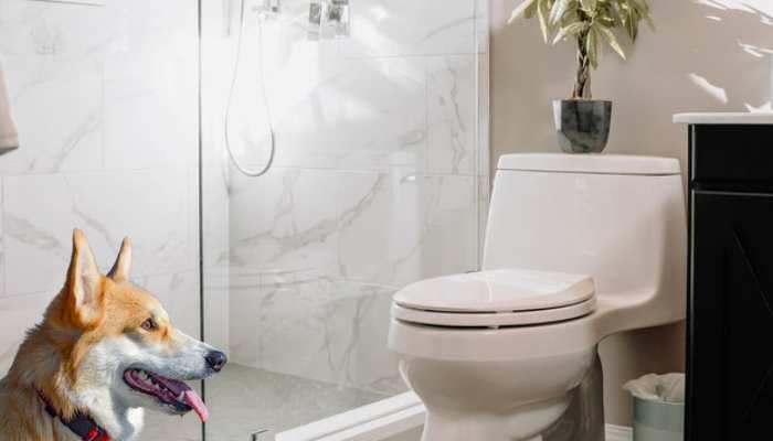 What Happens Without Regular Bathroom Breaks?