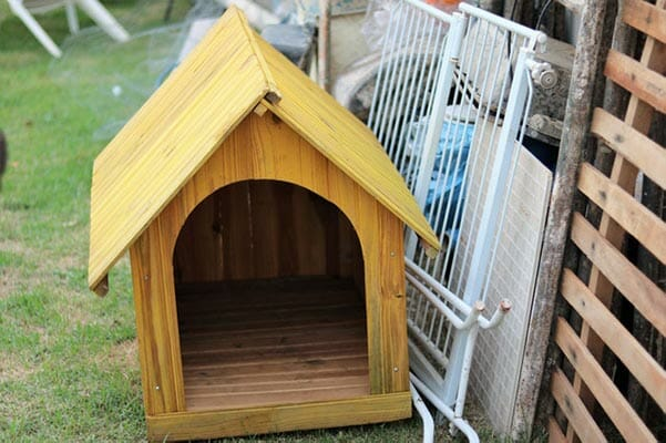 How To Heat A Dog House? -Temporary Methods