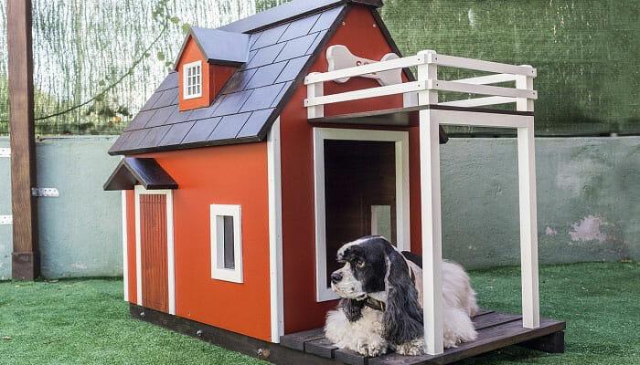 Best Ways To Heat A Dog House