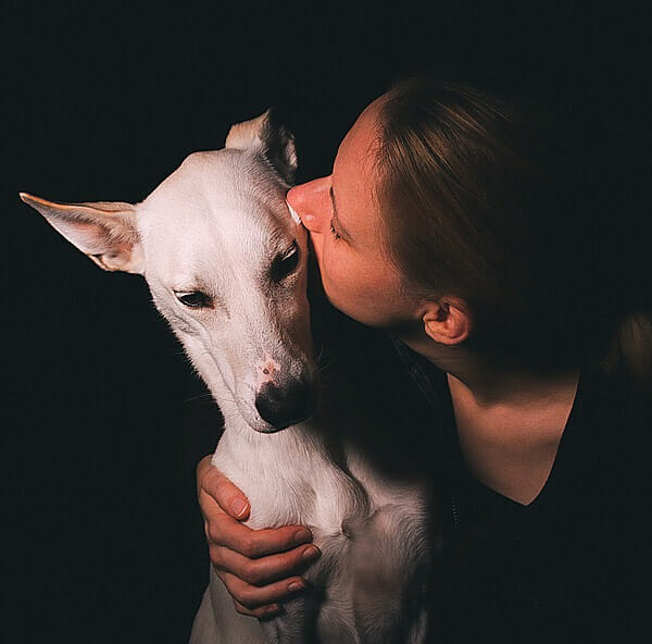 Do Dogs Like To Kiss Their Owners?